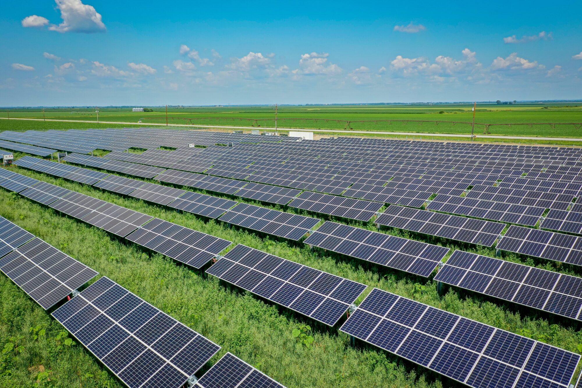 resized Tekamah Solar Field-0702